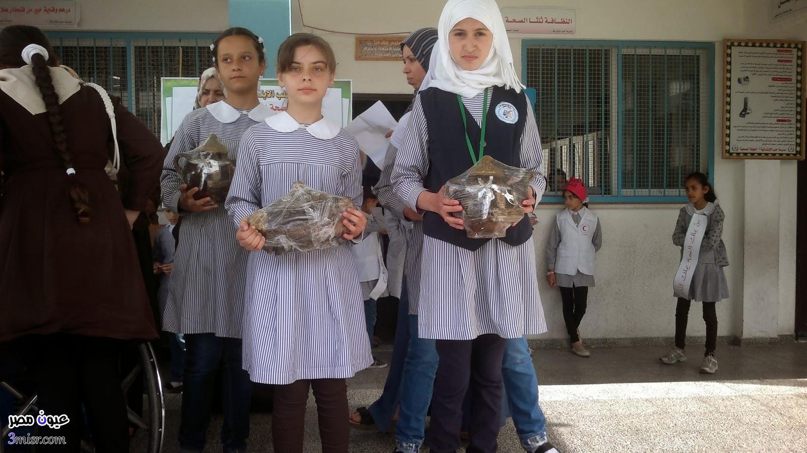 نتيجة ابتدائية الاسكندرية 2015 الترم الاول
