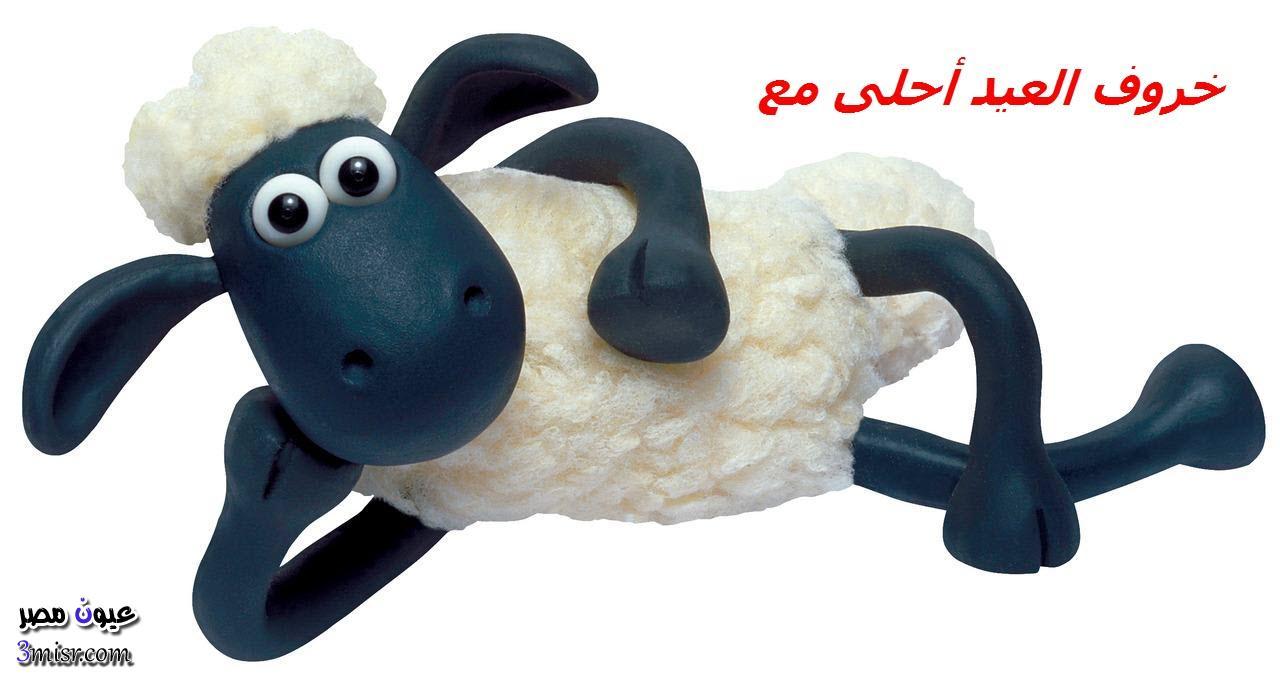 خروف العيد أحلى مع