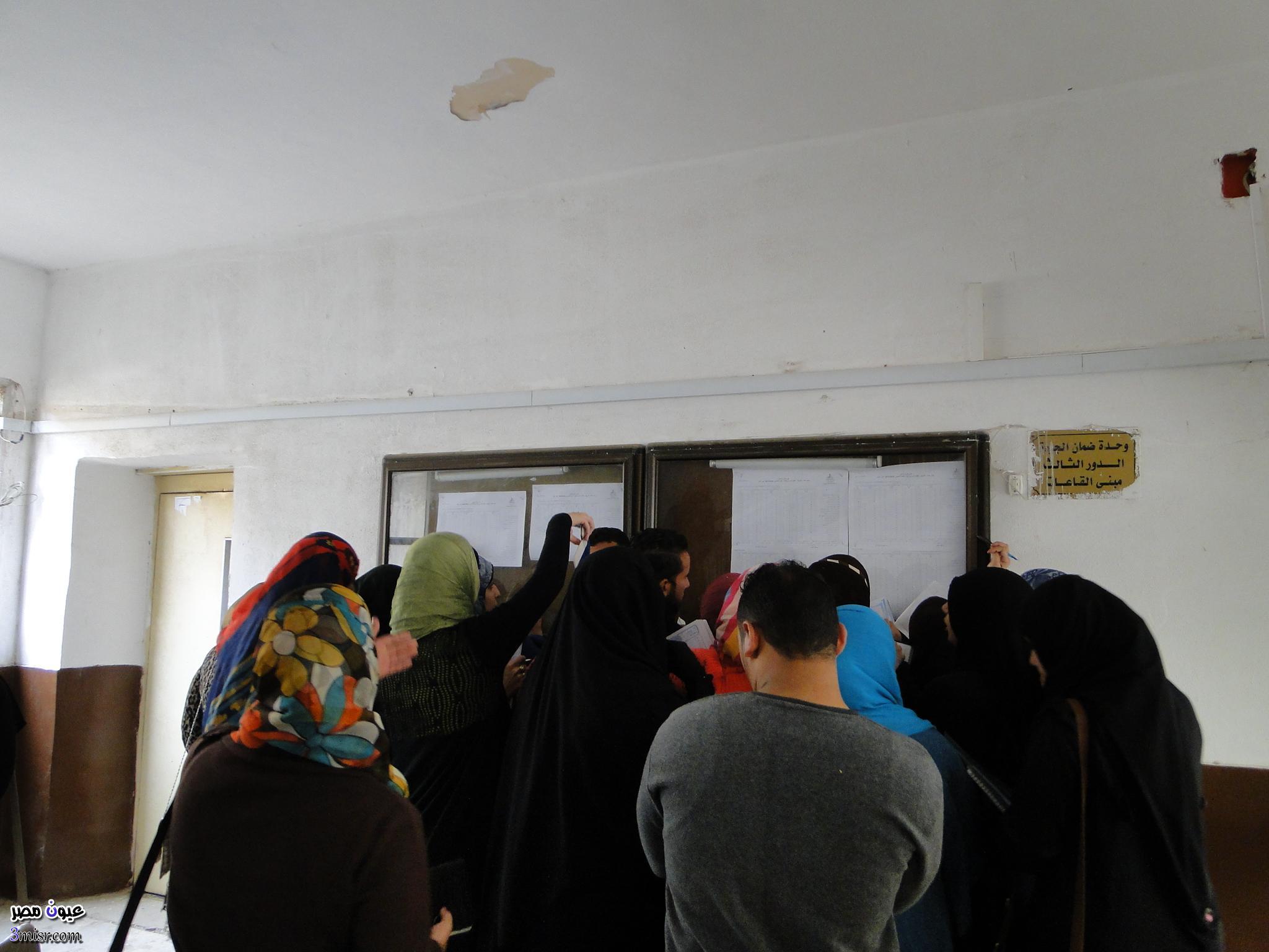 نتيجة تنسيق الدبلومات الفنية 2015 بوابة الحكومة المصرية الآن