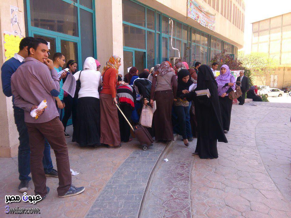 نتيجة تنسيق المرحلة الثالثة 2015 بوابة الحكومة المصرية