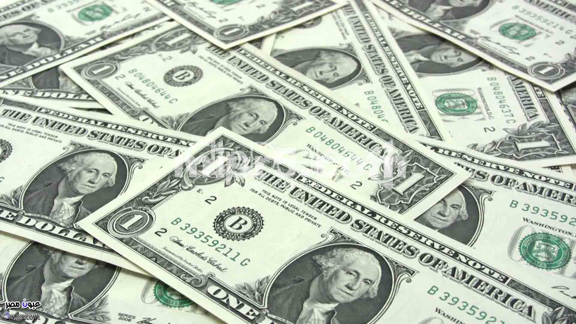 سعر الدولار الان البنك الاهلي مصر أسعار العملات اليوم السبت 10-12-2016